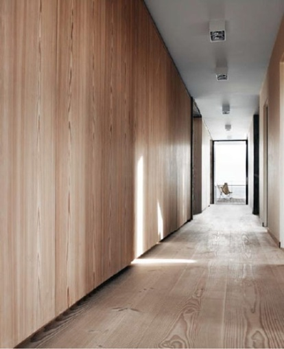 Hall, Modern Architecture, Baseboard, Wood, Natural